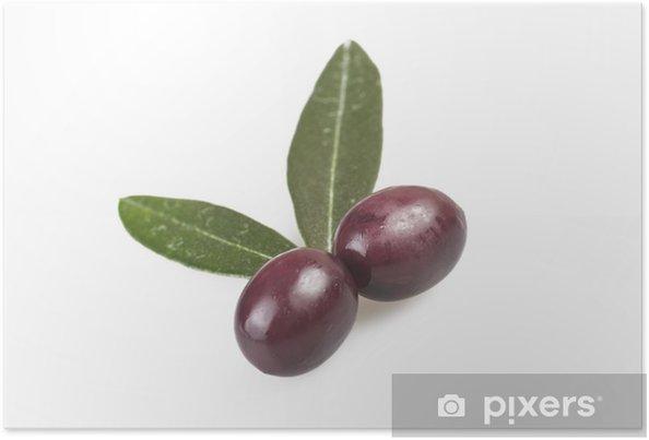 1d08249eb Plakat Taggiasche oliven og blader på den hvite