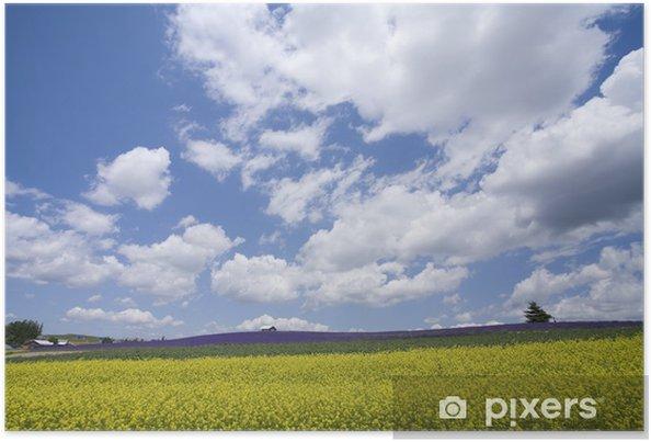 Plakát 菜 の 花 と 雲 - Domov a zahrada