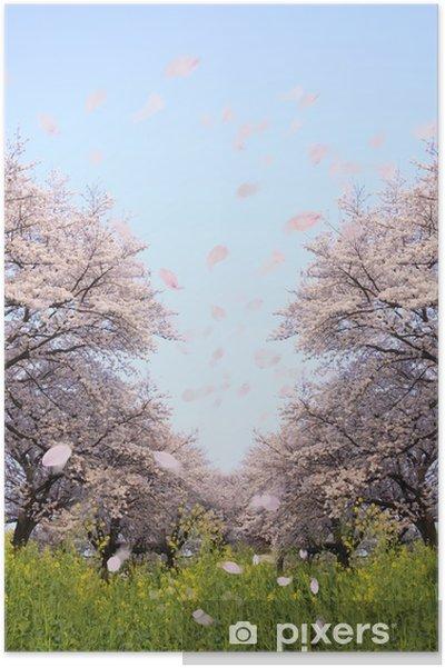 Plakát 桜 並 木 と 花 吹 雪 - Květiny
