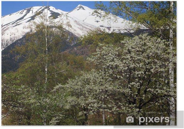 Plakát 乗 鞍 高原 残雪 の 乗 鞍 岳 と ス モ モ の 花 - Roční období