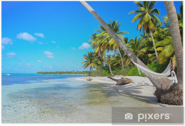 Plakat A hamaku między palmami na tropikalnej plaży - Woda