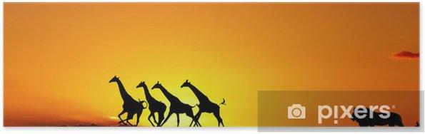 Plakát Africké příroda koncepce - Afrika