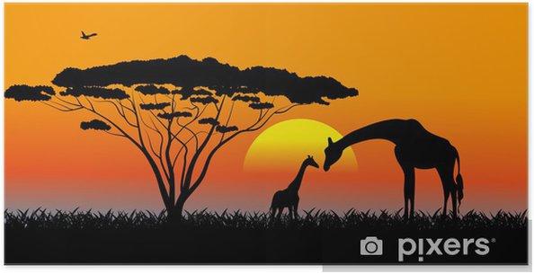 Plakat Afrykańskiej sawanny wieczorny krajobraz - Tematy
