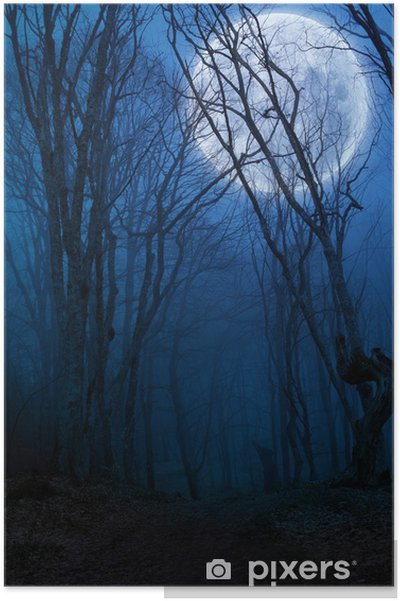 Plakat Agaist ciemny las noc pełni księżyca - Tła