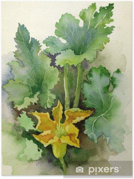 Plakat Akwarela Flora Kolekcja: Cukinia kwiat - Sztuka i twórczość