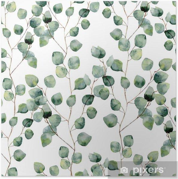 Plakat Akwarela zielony kwiatowy szwu z okrągłymi liśćmi eukaliptusa. Ręcznie malowany wzór z gałęzi i liści eukaliptusa srebrnego dolara na białym tle. Do projektowania lub tła - Rośliny i kwiaty