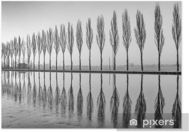 Plakat Alberi riflessi sul lago all'alba bianco e nero w - Krajobrazy