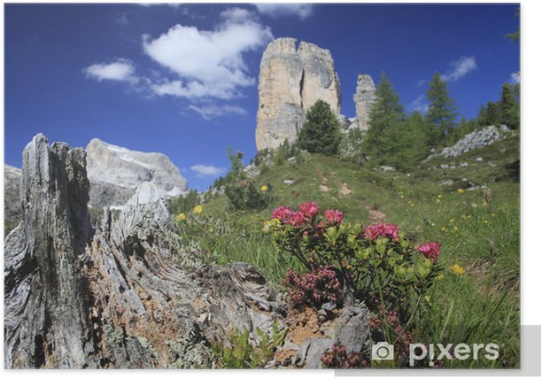 Plakat Alpenrose - Góry