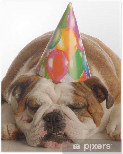 d5a44ffb4f0 Plakát Anglický buldok sobě narozeninové párty klobouk • Pixers ...