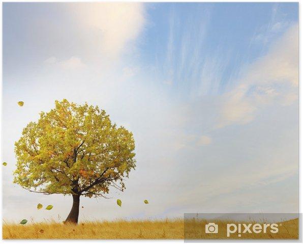 Plakat Autumn dekoracje - Cuda natury