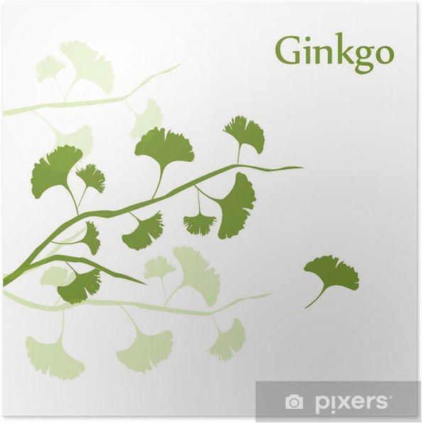 Plakat Background Ginkgo - Zdrowie i medycyna
