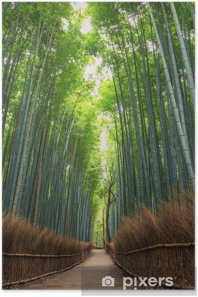 Plakat Bamboo Forest w Japonii, Arashiyama, Kioto - Rośliny