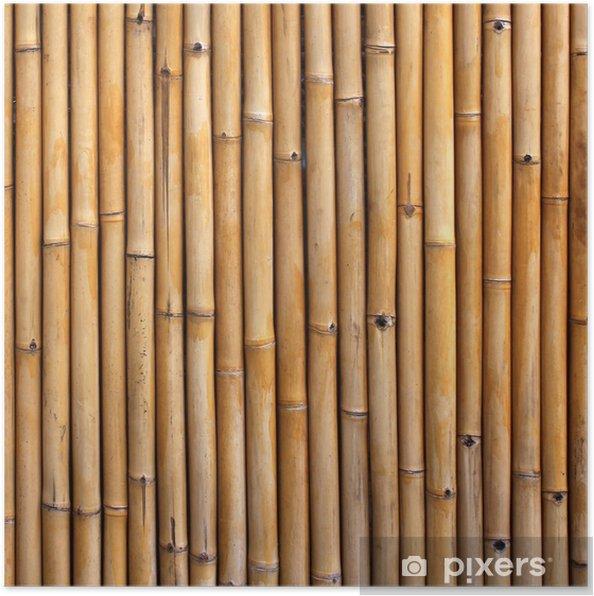 Plakat Bambus ogrodzenia - Tematy