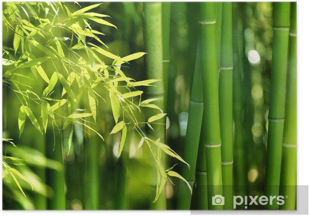 Plakat Bambusowy las - Tematy