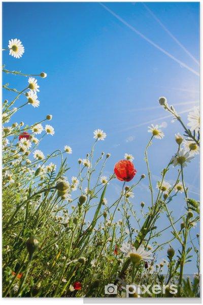 Plakát Barevné květy - Roční období