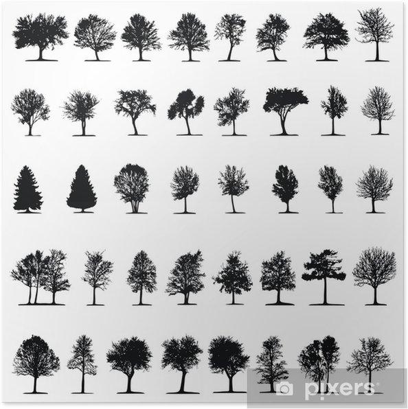 ein nadelbaum kreuzworträtsel