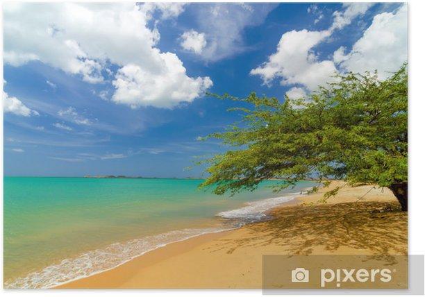 Plakát Beach and Tree - Témata