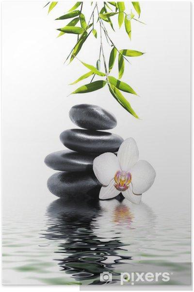 Plakat Biała orchidea kwiat bambusa końca -