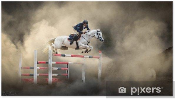 Plakat Biały koń - Sport