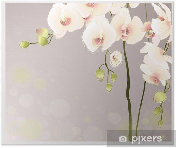 Plakát Blahopřání s orchidejí. Ilustrační orhid. - Témata