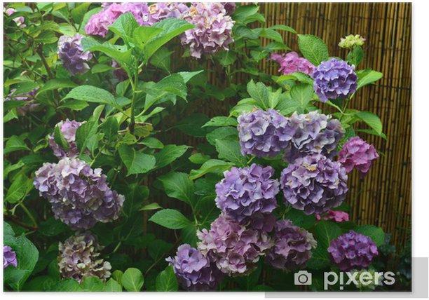 Plakat Blautöne - Kwiaty