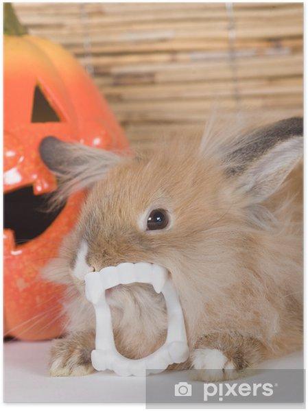 Plakat Brązowy królik z zębami wampira, dynia halloween - Święta międzynarodowe