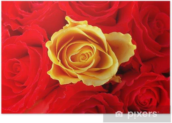 Plakat Bukiet czerwonych róż z jednym jedna żółta - Szczęście