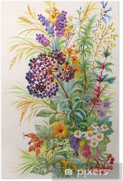 Plakat Bukiet polnych kwiatów - Kwiaty