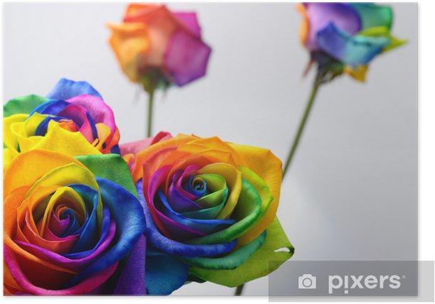 Plakat Bukiet Tęcza róża - Tematy