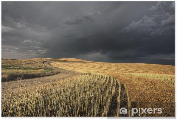 Plakat Burzowe chmury saskatchewan - Krajobraz wiejski