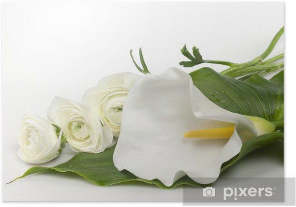 Plakat Calla i ranuncoli - Kwiaty