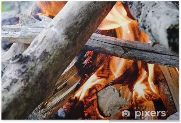 Plakat Camp fire - Wakacje