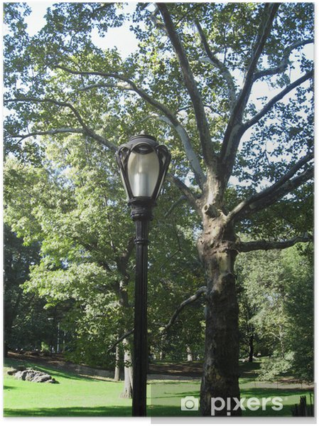 Plakát Central Park - Veřejné budovy