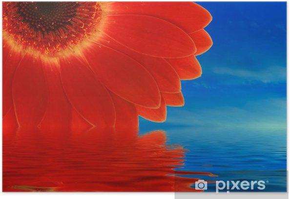 Plakát Červená gerbera, reflexe - Savci