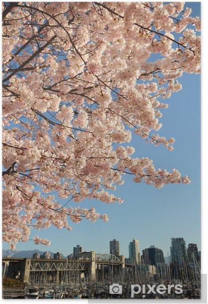 Plakat Cherry Blossoms ponad Vancouver - Ameryka