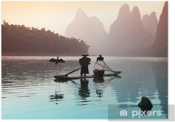 Plakat Chiński mężczyzna połowów z kormorany ptaków - Natura i dzicz
