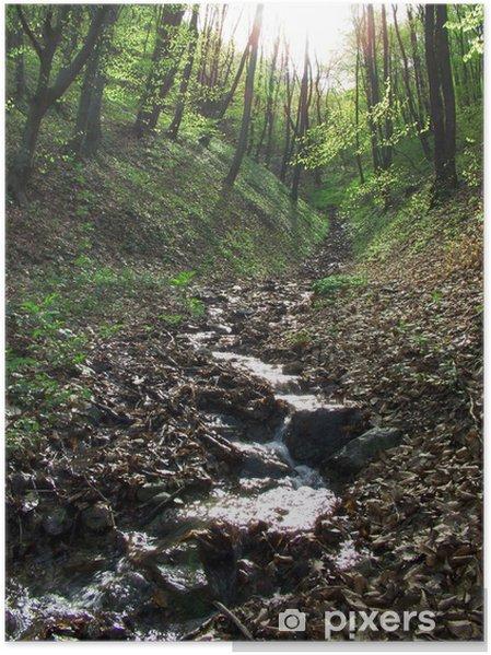 Plakát Čistá voda - Voda
