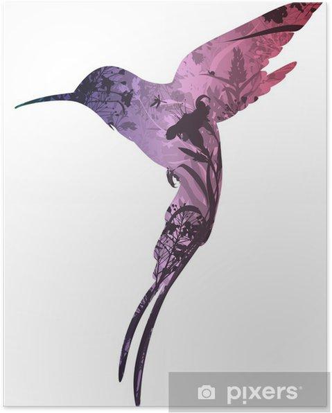 Plakat Colibri - Ptaki