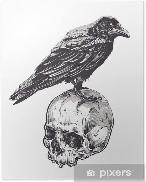 Plakat Crow na Czaszki - Zwierzęta