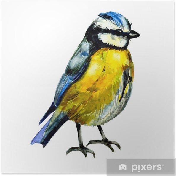 Plakat Cute ptaków do projektowania. akwarela - Sztuka i lifestyle