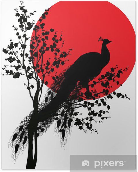 Plakat Czarna sylwetka paw czerwonego słońca na białym - Ptaki