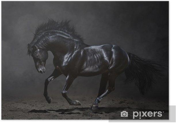 Plakat Czarny koń galopujący na ciemnym tle -