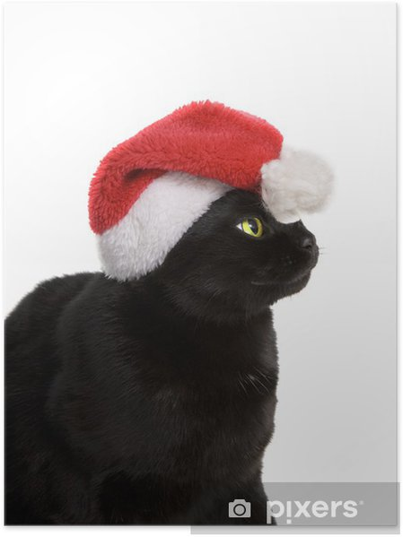 Plakat Czarny kot Santa - Kot Christmas Cute na białym tle - Święta międzynarodowe