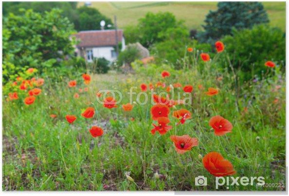 Plakat Czerwone maki w Francja - Krajobraz wiejski