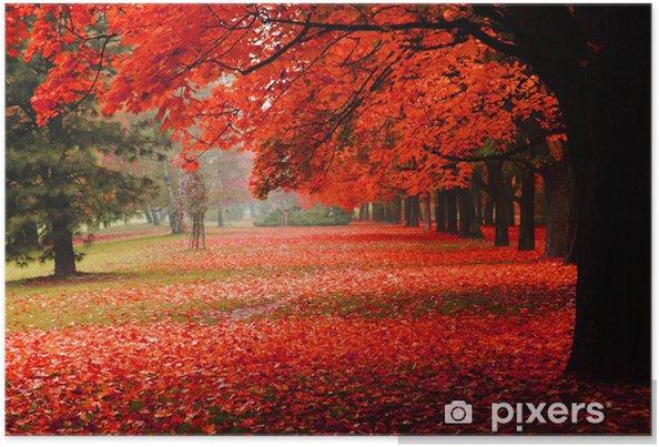 Plakat Czerwony jesienią w parku - Przeznaczenia