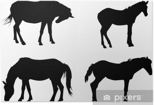 Plakat Cztery czarne konie na białym - Ssaki