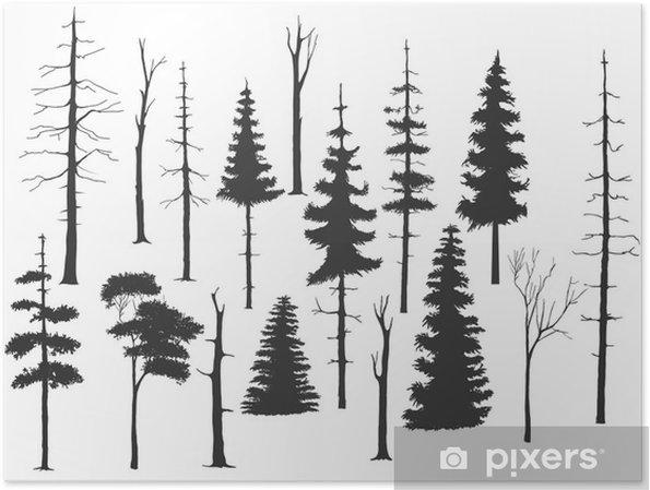 Plakat Darmowy zestaw handdrawing drzewa - Cuda natury