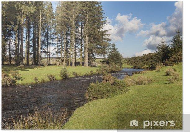 Plakat Dart East River przepływającej przez las na Dartmoor Bellever - Europa