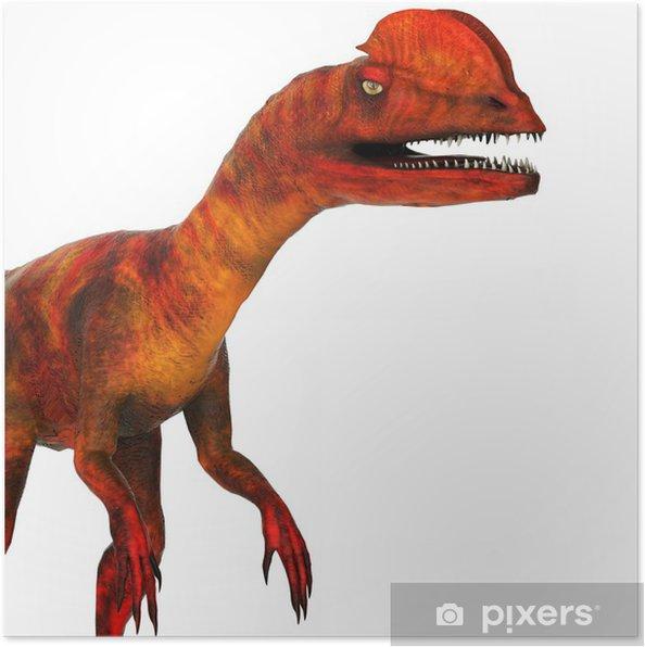 Plakát Diceratops zavřít - Ostatní Ostatní