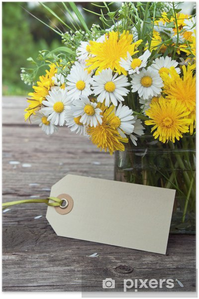 Plakát Divoké květiny - Slavnosti